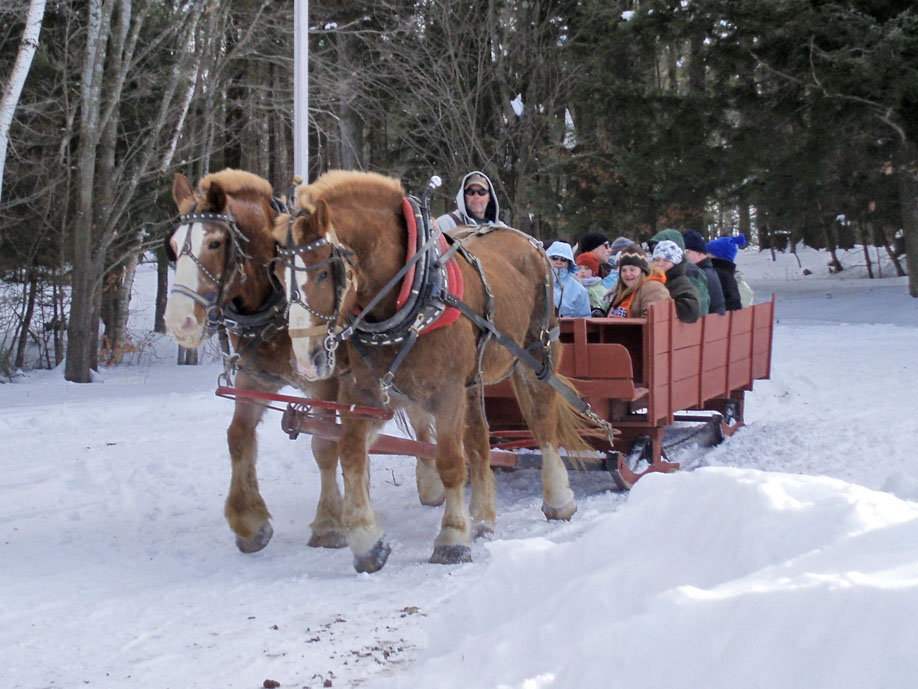 Indian Creek Farm gave horse drawn sleigh rides on the snow-laden trails of the Park. Photo courtesy of Elizabeth Wagner.