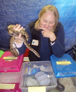 Dee Strnisa of Five Rivers chats it up with Snickers the Ball Python. Photo courtesy of Elizabeth Wagner.