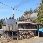 Sugaring On Johnson Hill Road