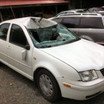 Moose Attacks VW; Meat Served To NLCS Graduates