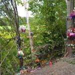 Fatal Accident In Hoosick