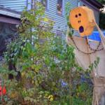 Halloween Or The Political Season?