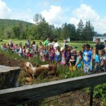 Stephentown Summer Camp Combined Fun And Learning
