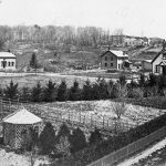 Remembering The Grafton Town Green As It Was Long Ago