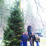 A Christmas Tree Goes Up In Petersburgh
