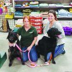 Agway Evolves To Meet Customer's Needs